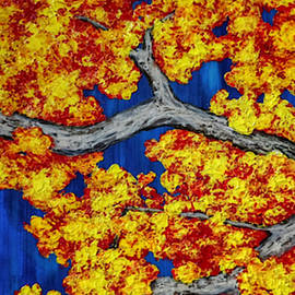 Maple Branches  by Ashley Koebrick Schmidt