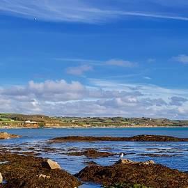 Marazion coast, Cornwall, England. by Joe Vella