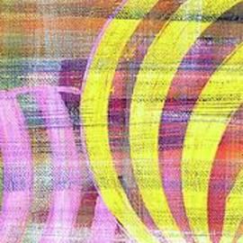 Mardi Gras wide 3 by Patty Donoghue