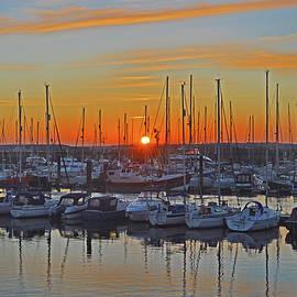 Marina Sunset by Terence Davis