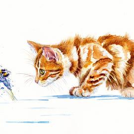 Marmalade Kitten - Nature Watch by Debra Hall