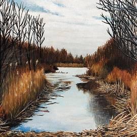 Marsh Pond by Sheldon Goldman