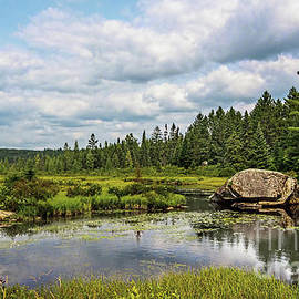 Marty's Place Algonquin Park by Barbara McMahon