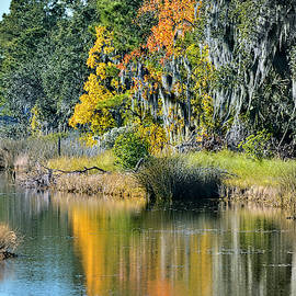 Mary's Point Foliage by Jerry Griffin