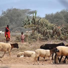 Masai with Sheep by Marta Kazmierska