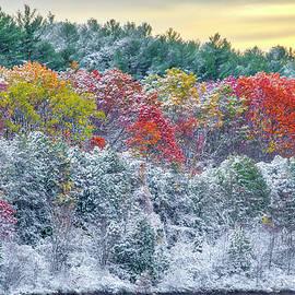 Massachusetts Snow Foliage at the Wachusett Reservoir by Juergen Roth