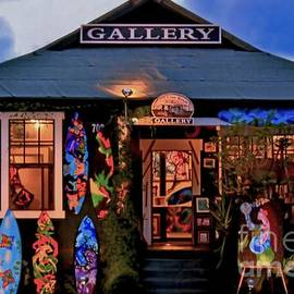 Maui Gallery by DJ Florek