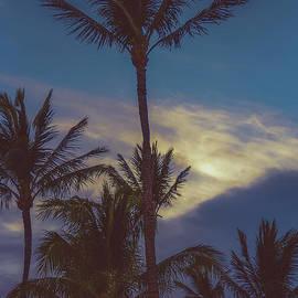 Maui Magic by Kelly Wade