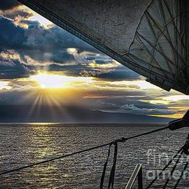 Maui Sail Into Sunset  by Michele Hancock Photography