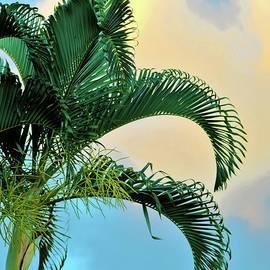 Maxfield Parish Palms by Heidi Fickinger