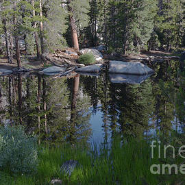 May Lake Trailhead  by Debby Pueschel