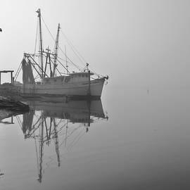 May River Reflections by Matt Richardson