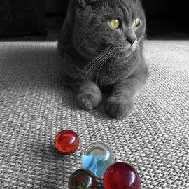 Me and My Marbles by Elisabeth Lucas