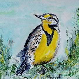 Meadowlark bird  by Patty Donoghue