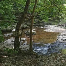 Meandering Creek by Scott Kingery
