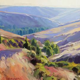 Meandering Landscape by Steve Henderson
