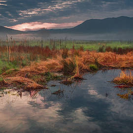 Melancholy Morning in Cades Cove by Marcy Wielfaert
