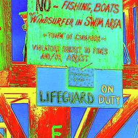 Menemsha Beach Rules by Kathy Barney