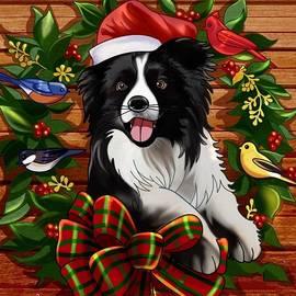 Merry Bark by Teresa Trotter