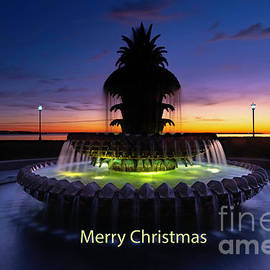 Merry Christmas from Charleston by Norma Brandsberg