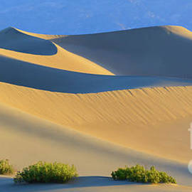 Mesquite Flat Sand Dunes in Death Valley National Park by Henk Meijer Photography