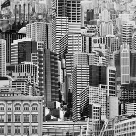 Metropolis by Siene Browne