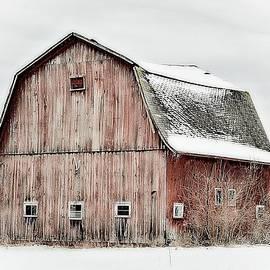 Michigan Barn Against A Stark Sky by Toni Abdnour