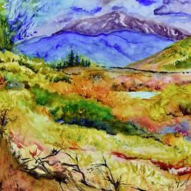 Middle Fork South Platte by Beverley Harper Tinsley