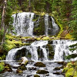 Middle Fork Tumalo Falls by Dana Hardy