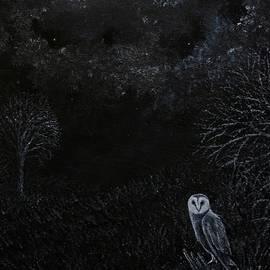 Midnight Barn Owl by Philip Harvey