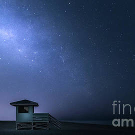 Milky Way in Venice, Florida  by Liesl Walsh