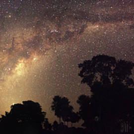 Milky Way over the Pantanal by David Farlow