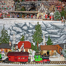 Miniature Train Display by Sally Weigand