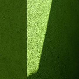 Minimal Green by Arro FineArt