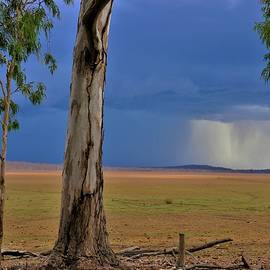 Minnamoolka Storms Coming by Joan Stratton