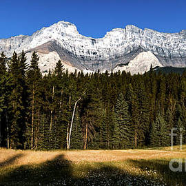 Minnewanka Meadow by Norma Brandsberg
