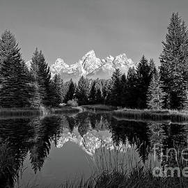 Mirror Mirror in Black and White by Paul Quinn