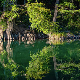 Mirrored Reflections on the Guadalupe by Lynn Bauer