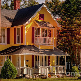 Miss Daisy Lives In A Yellow House In Leesburg Florida by Philip And Robbie Bracco