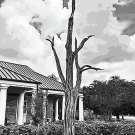 Mississippi Gulf Coast - Hurricane Katrina Tree Sculptures in Black and White by Marian Bell