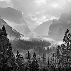 Mist, Yosemite Valley by Justin Foulkes