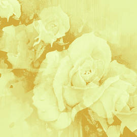 Misty Champagne Roses by Hanne Lore Koehler