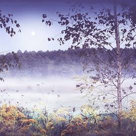 Misty Evening by Slawek Aniol