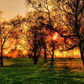 Misty Morning Golden Sunrise Glow by Paul Thompson