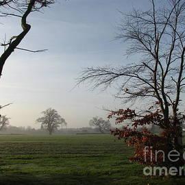 Misty Morning by Kathryn Jones