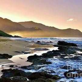 Misty Morning Keawaula by Craig Wood