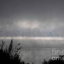 Misty Sunrise At Bald Eagle State Park by Lois Bryan