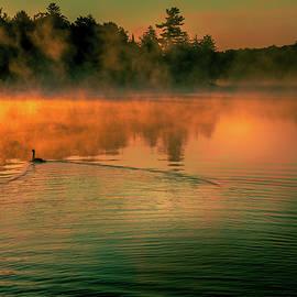 Misty Sunrise by David Patterson