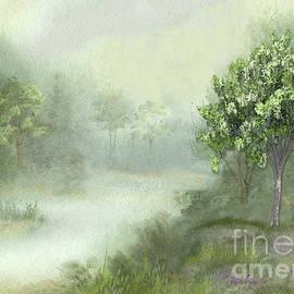Misty Woodland Stream by J Marielle