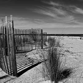 Mitchelville Beach - Shadows by Matt Richardson